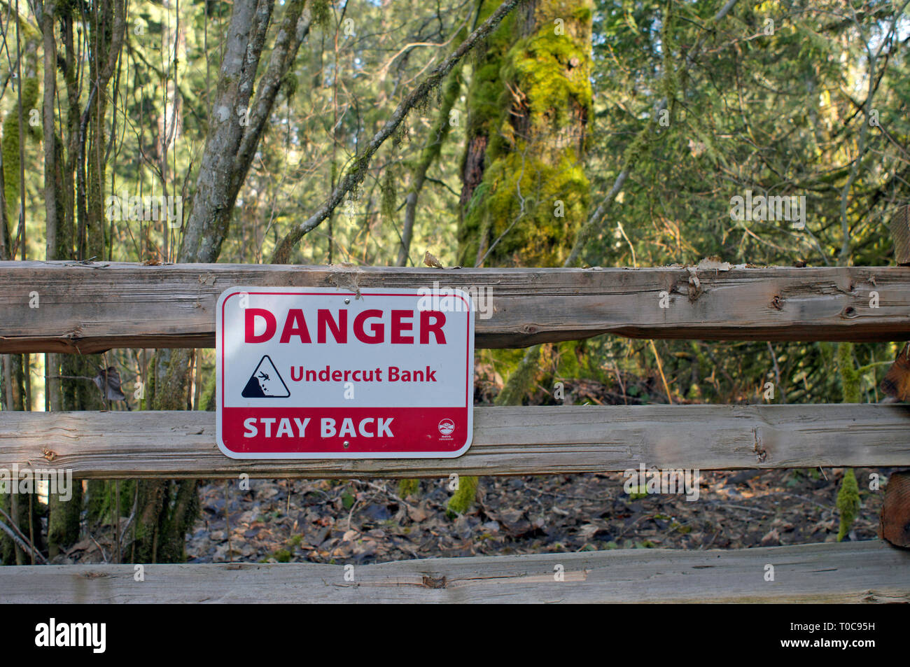 Red and white Danger sign reading Undercut Bank Stay Back mounted on a guardrail fence along a trail in Kanaka Creek Regional Park, B. C. Canada. - Stock Image