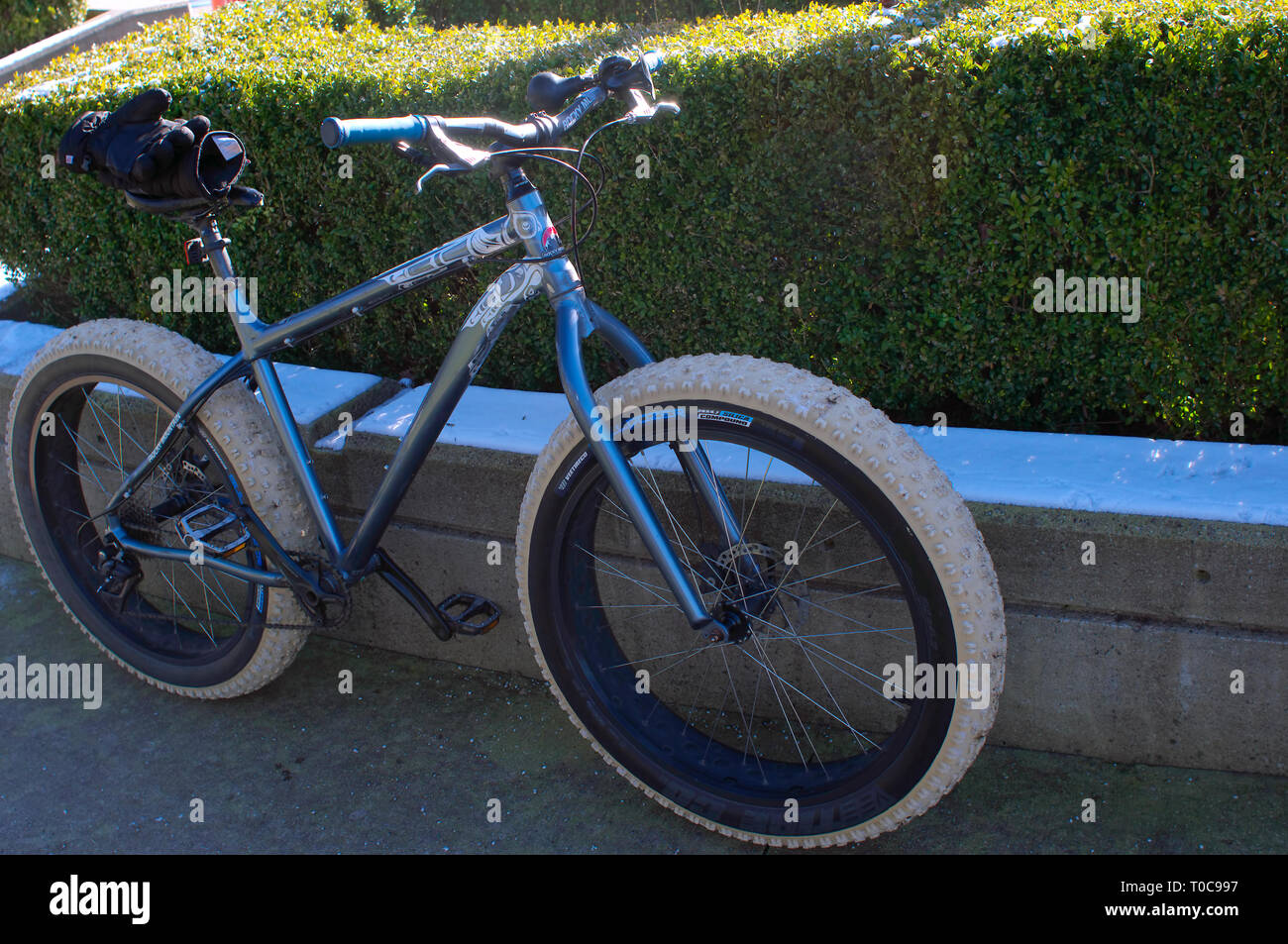 Blue bicycle with large, nubby tires leaning against a cement foundation with shrubs in the background. - Stock Image