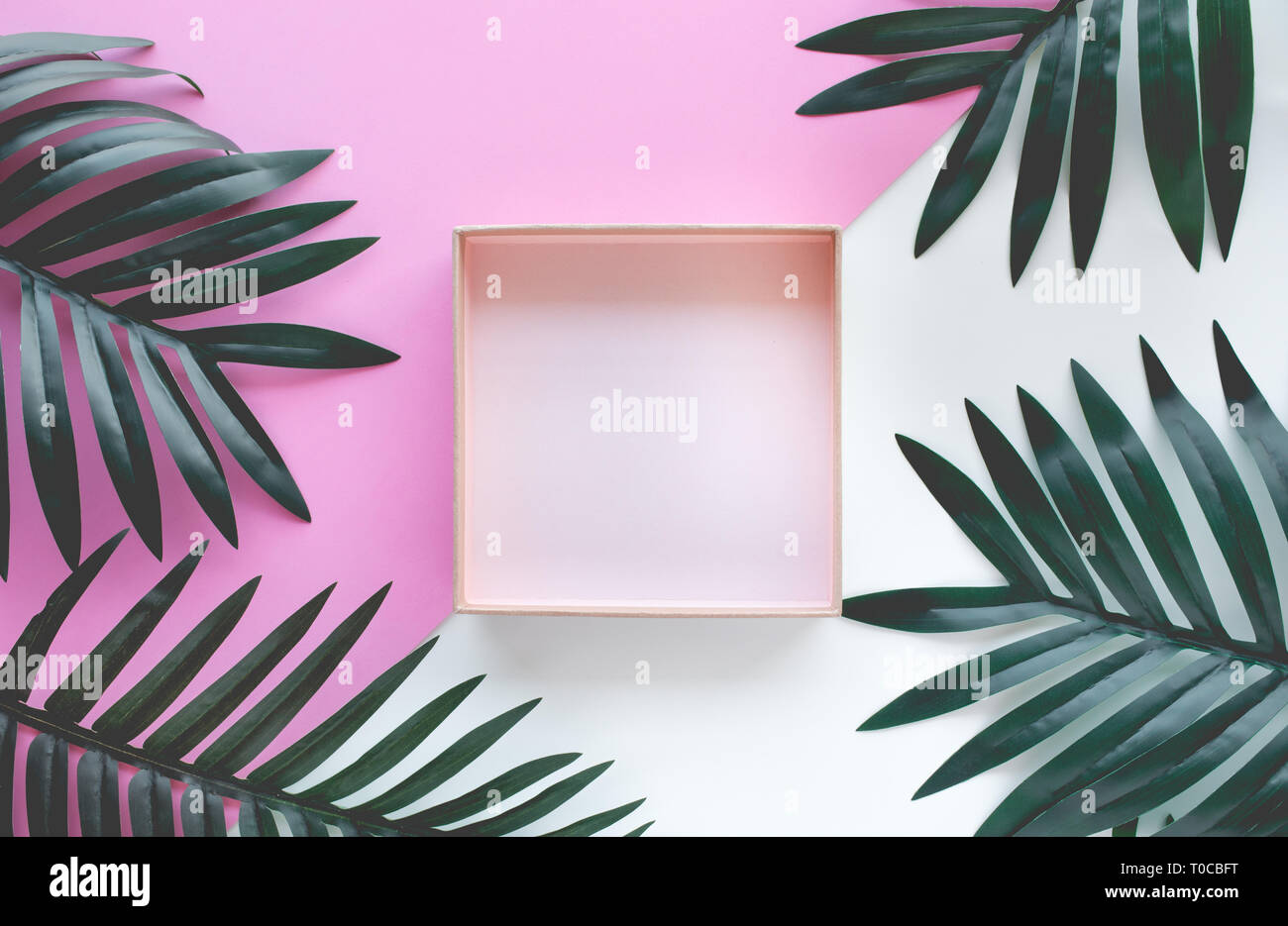 Tropical leaves foliage plant close up with box frame copy space background.Nature and summer concepts ideas.For decoration design - Stock Image
