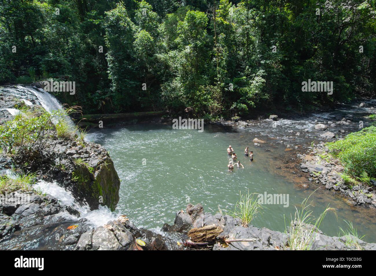 Family swimming at Nandroya Falls in Wooroonooran National Park, Far North Queensland, FNQ, QLD, Australia Stock Photo
