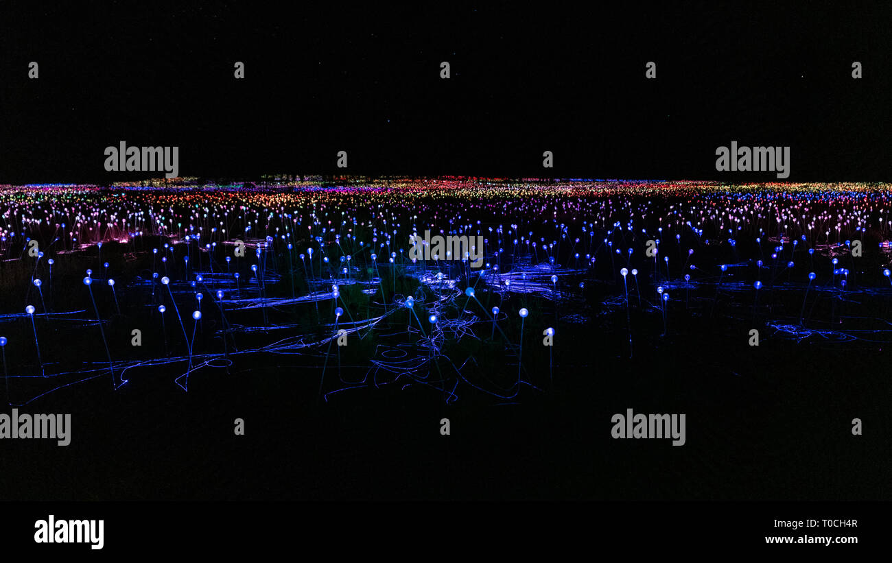 Field of light panorama at night with mostly blue lights in NT Australia - Stock Image