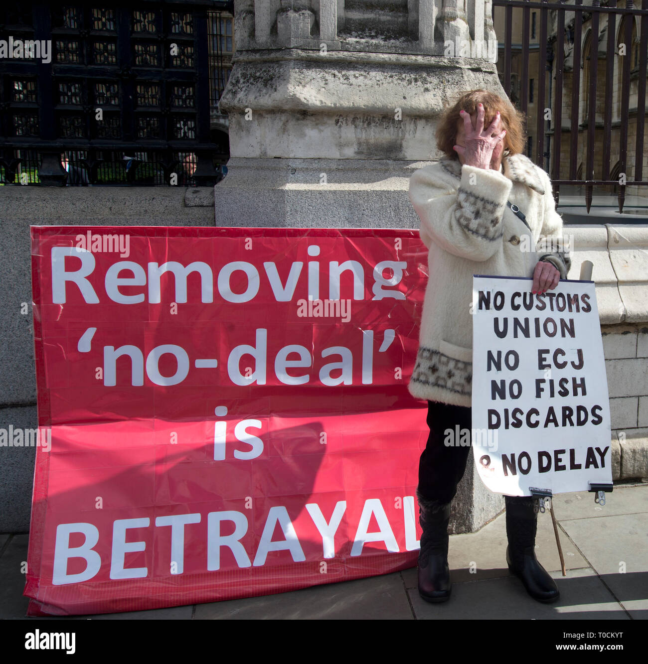 Westminster March 19th 2019. Brexit Leave protester Hazel Prowse with her placard of the day - Stock Image