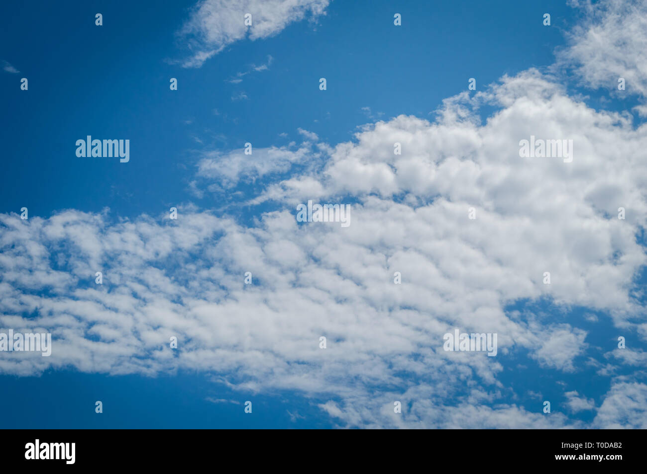 A deep blue sky with continuous white clouds - Stock Image