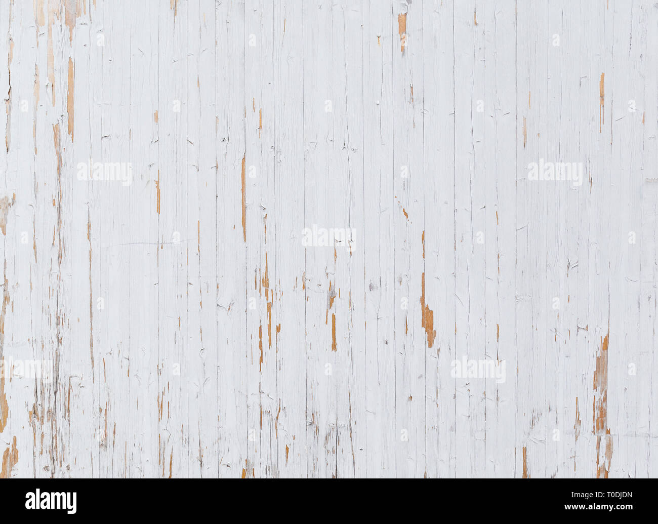 High resolution full frame background of a weathered wooden wall or wood paneling, white paint peeling off. Stock Photo