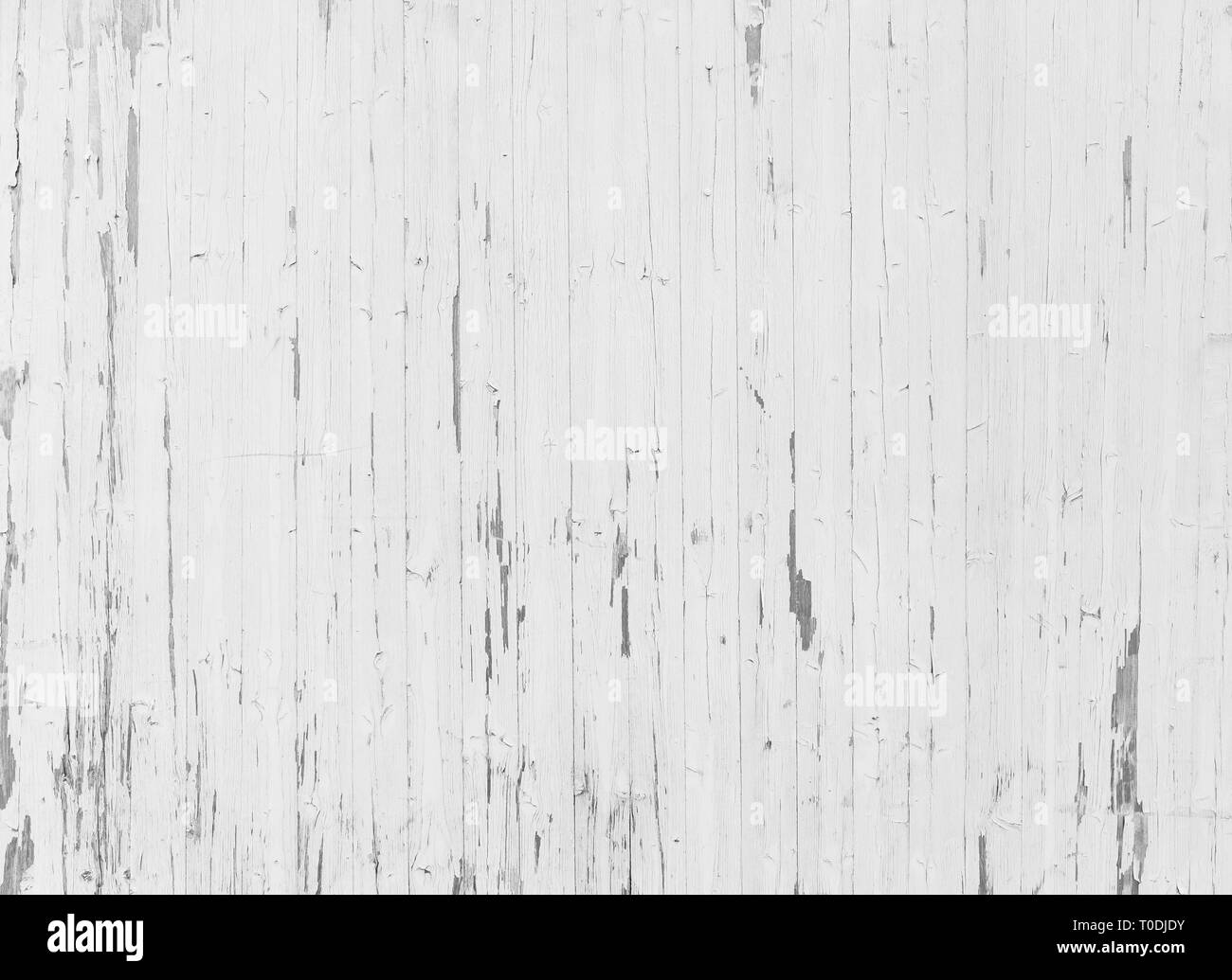 High resolution full frame background of a weathered wooden wall or wood paneling in black and white, paint peeling off. Stock Photo