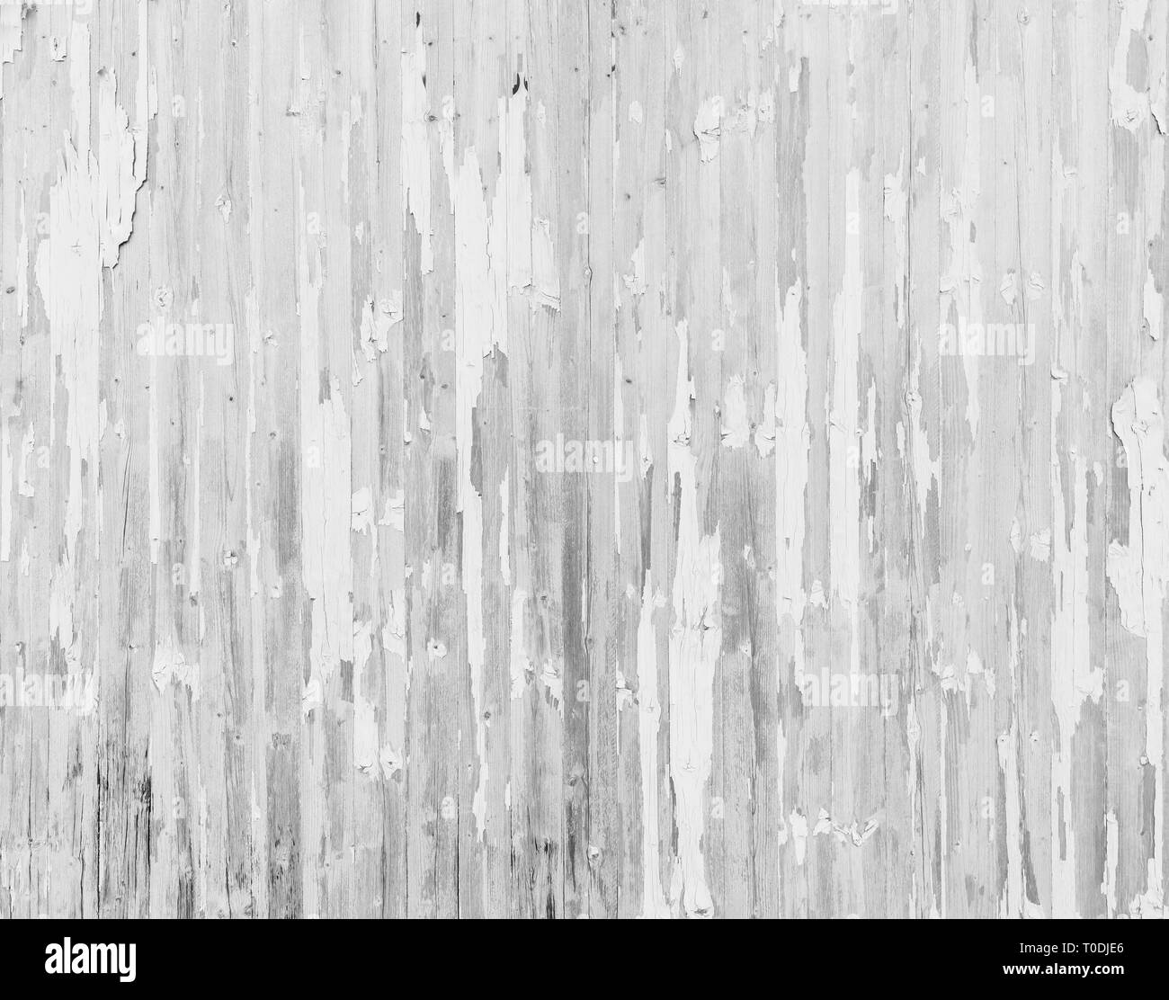 High resolution full frame background of a weathered and faded wooden wall or wood panelling in black and white, paint mostly peeled off. Stock Photo