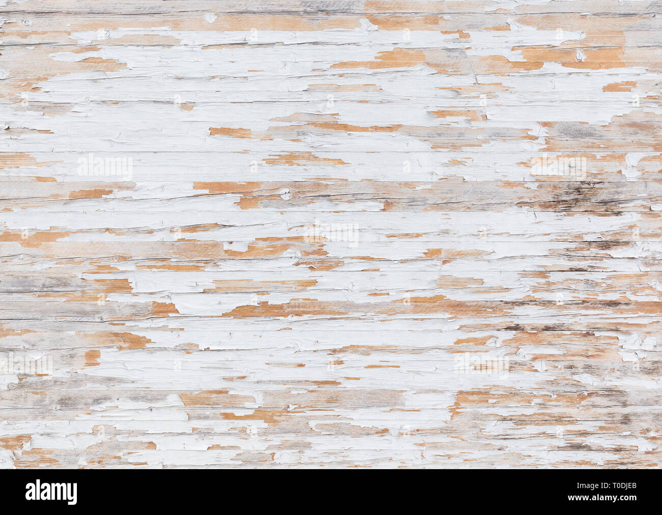 High resolution full frame background of a weathered and faded wooden wall or wood paneling, white paint mostly peeled off. Stock Photo