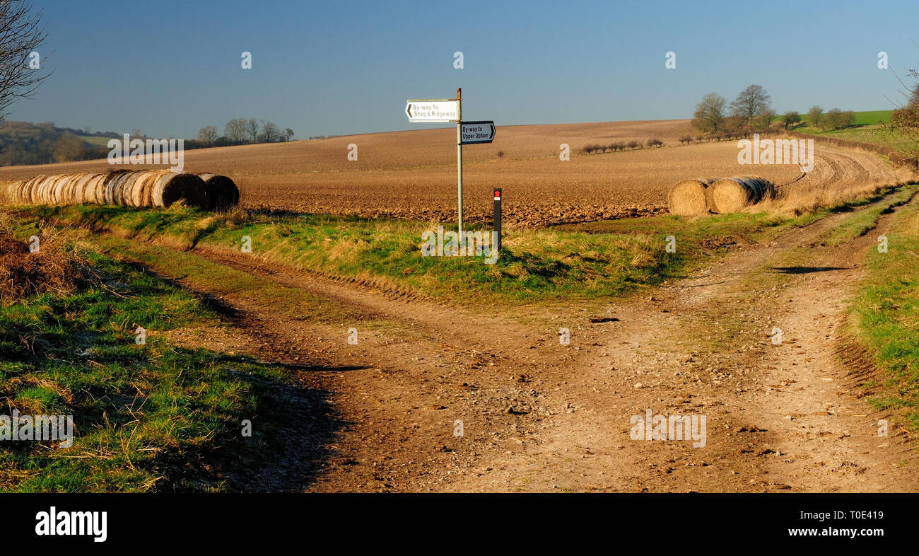 A byway junction on the Lambourn Downs. - Stock Image