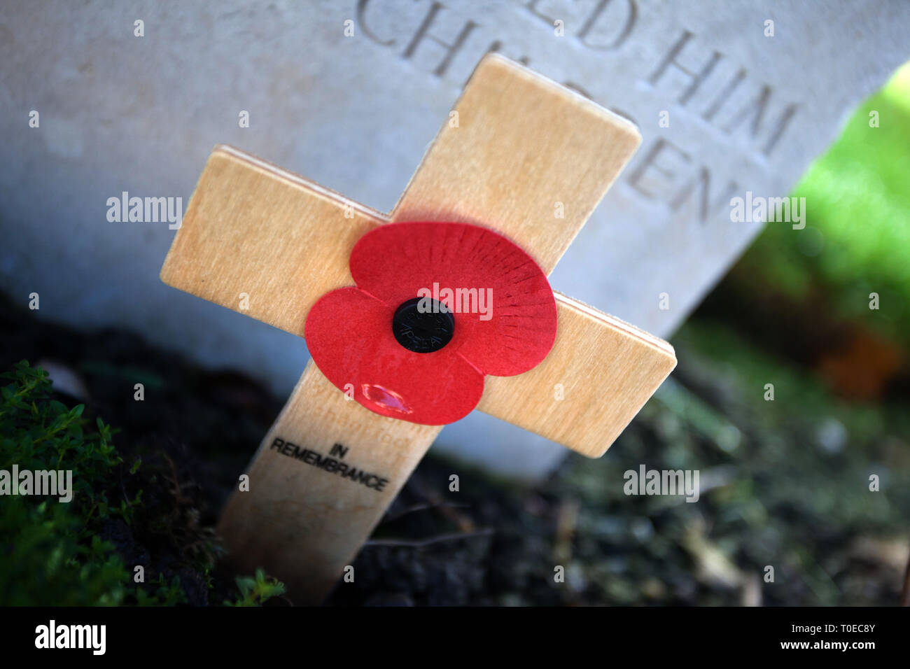Headstones and memorials to the fallen soldiers of the great war between 1914 and 1918. Tyne Cot Cemetery Belgium - Stock Image