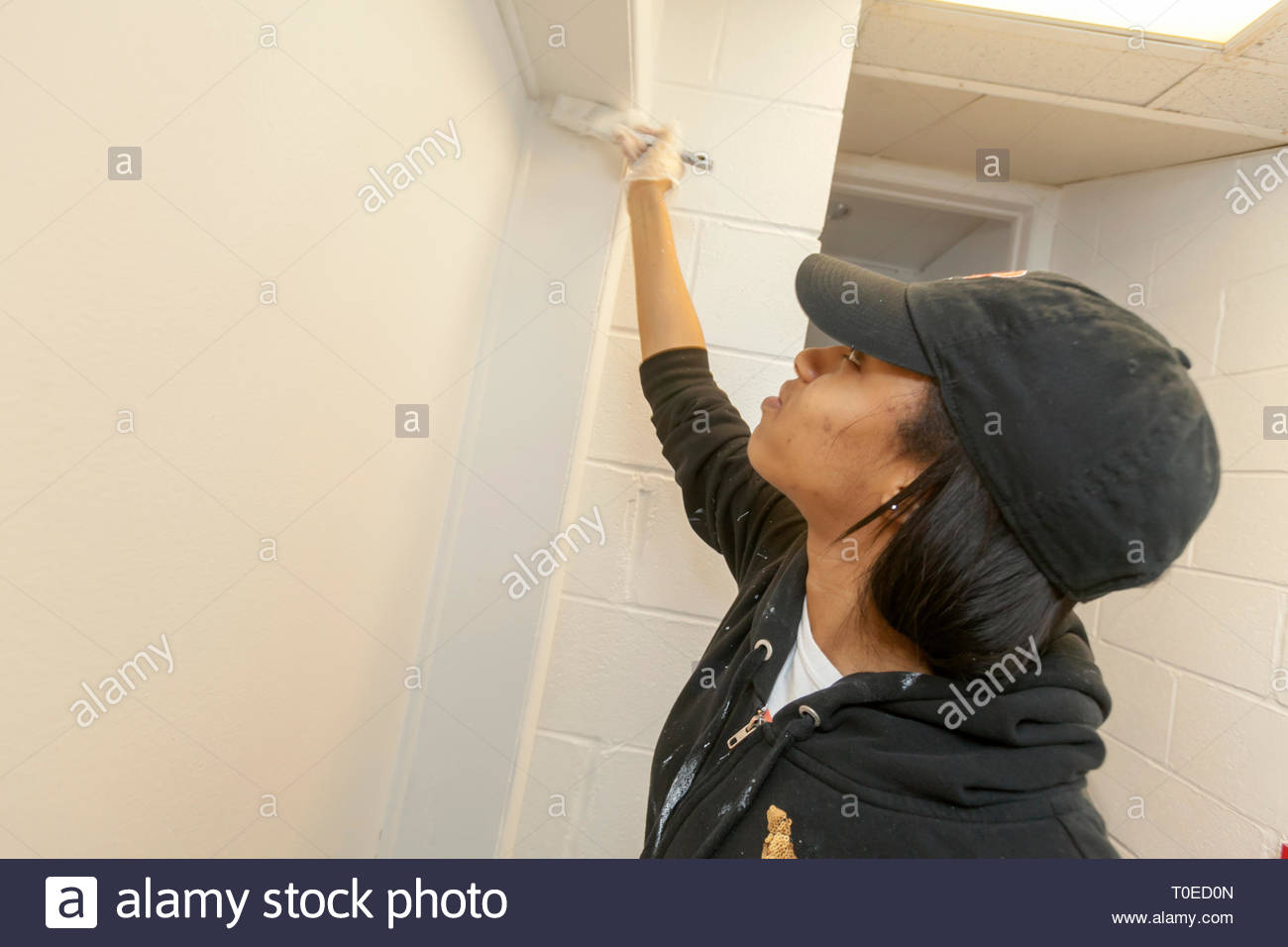 Young men and women engaged in community service painting, renovating and cleaning floors in a community facility. - Stock Image