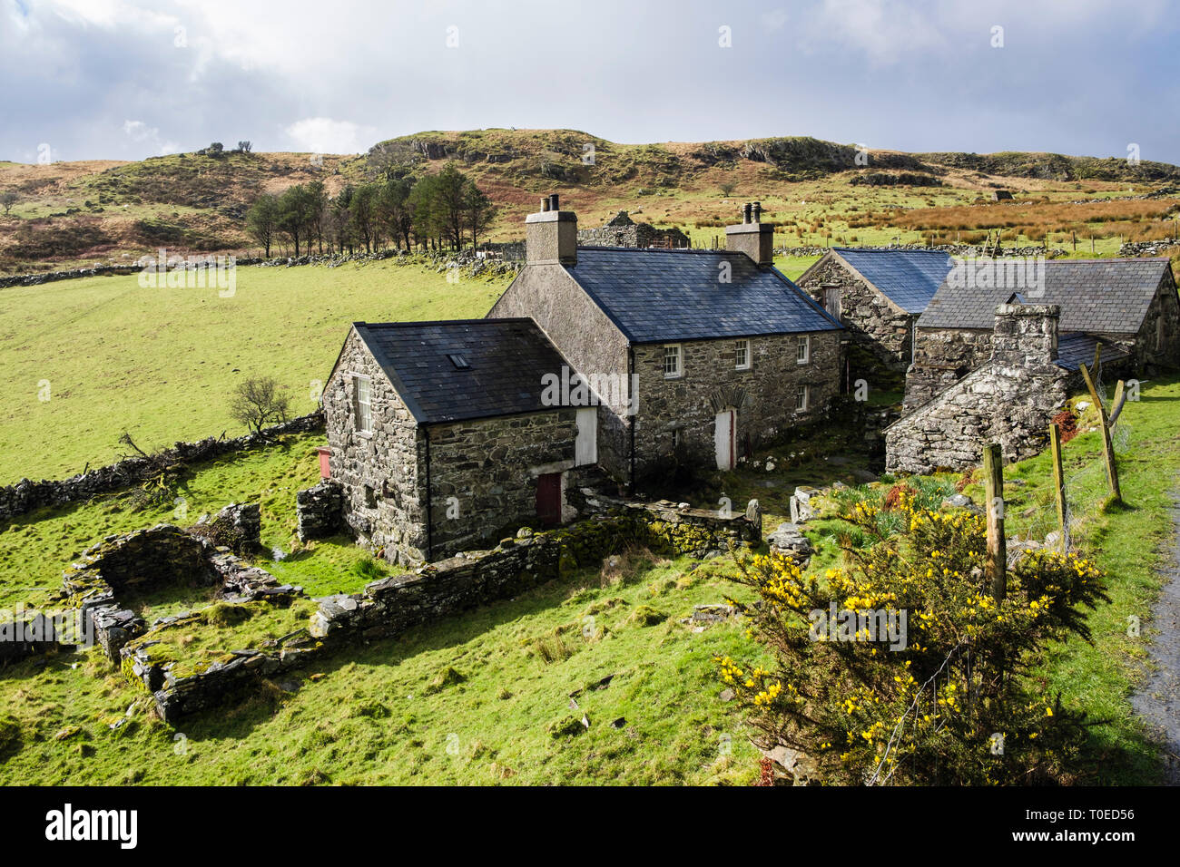 """""""Erwsuran"""" a traditional old Welsh stone farm house with slate roof and outbuildings in hills of Snowdonia. Tremadog Gwynedd north Wales UK Britain Stock Photo"""