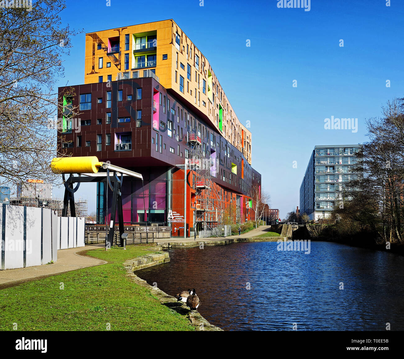The colourful Chips Building, by Urban Splash, on the Ashton Canal, Ancoats, Manchester Stock Photo