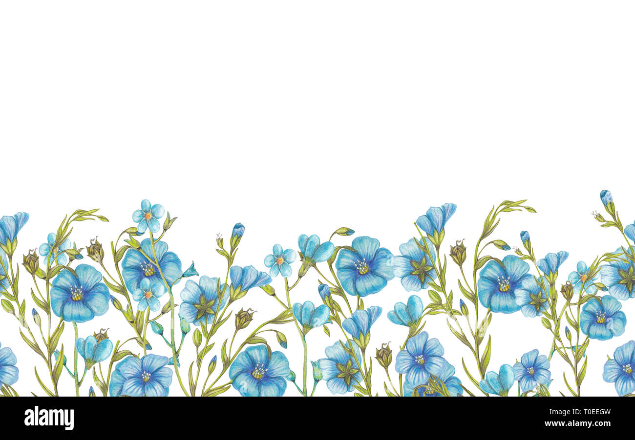 Blue Tools Home Improvement Watercolor Gardening Flowers