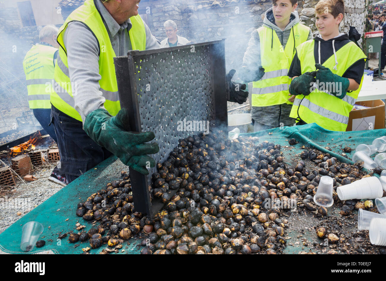 A roaster turns out roasted chestnuts from a smoky tray on a sorting table at the annual traditional customary of Livadi village, Thessalonica, Greece - Stock Image