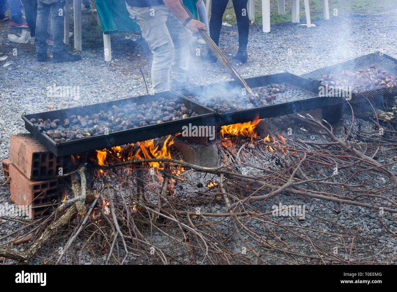 A hand-picked batch of raw sweet chestnuts getting roasted on an open fire in Livadi, during the annual festival.Thessalonica, Thermi, Greece - Stock Image