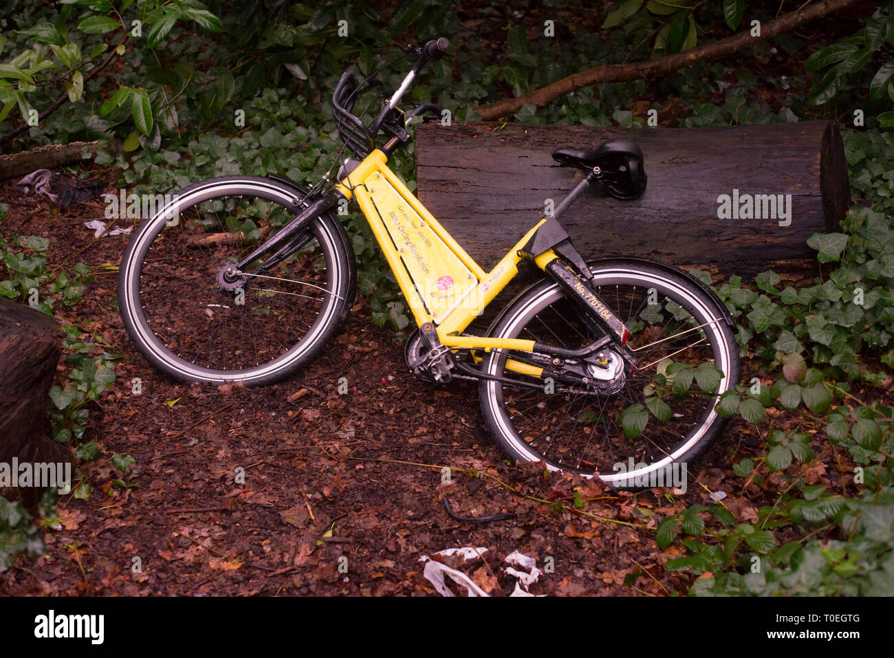 A bicycle belonging to the YoBike dockless bike sharing scheme abandoned amoong bushes on Southampton Common. - Stock Image