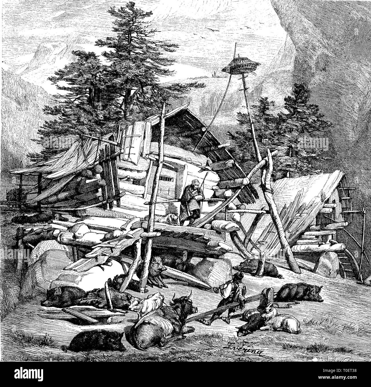 a primitive chalet on the high mountains of Hercegovina, Bosnia and Herzegovina  /  Eine promitive Sennhütte auf dem Hochgebirge der Herzegovina, Bosnien und Herzegowina - Stock Image