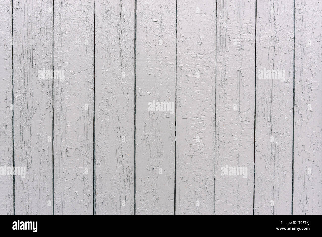 White Wooden Fence. The Surface Of The Tree. Painted Boards In White Color.  Uneven Texture. Wood Texture Background