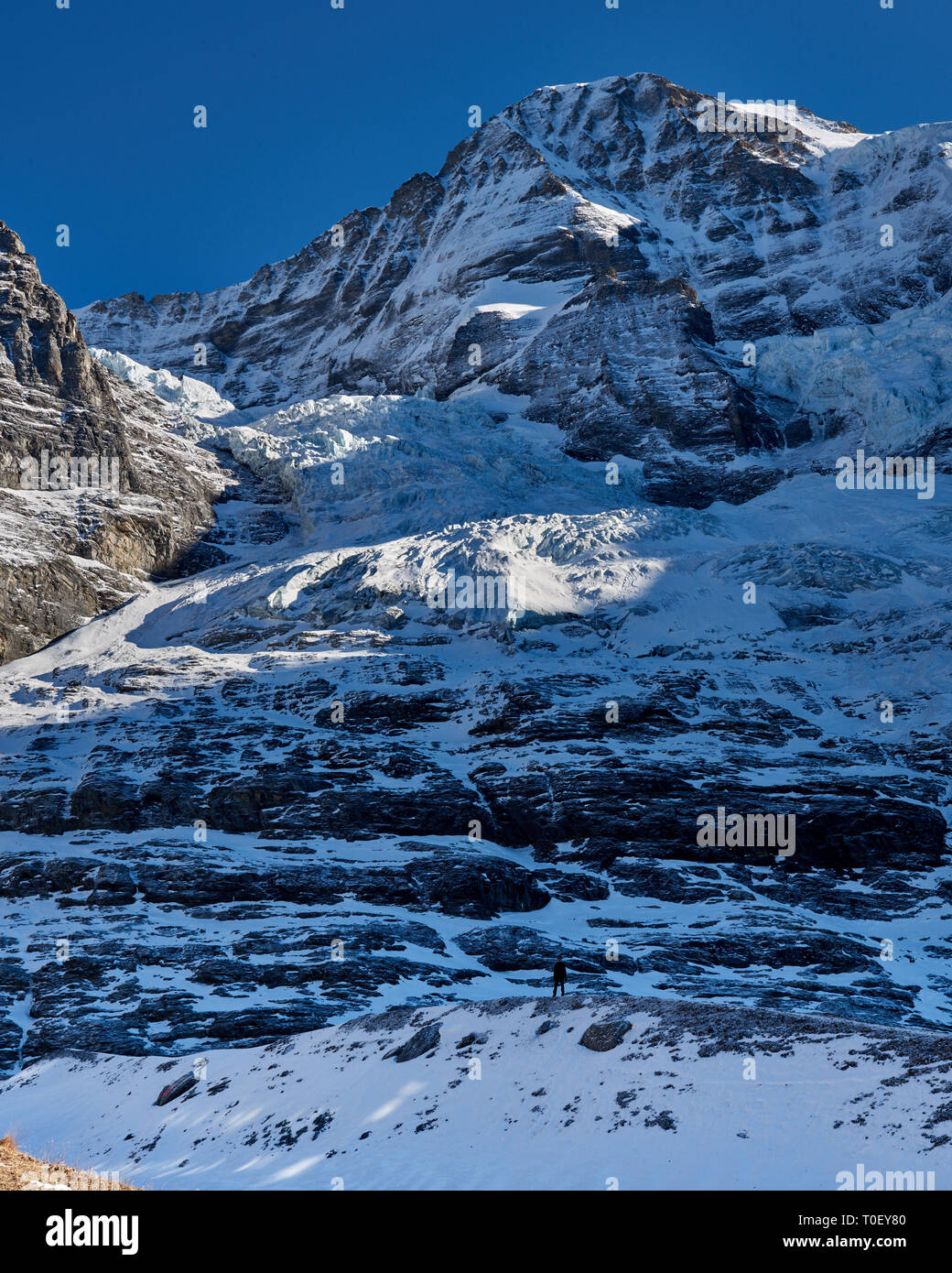 Unplugged in the Jungfrau region. Hiking in the foot of the mighty Eiger glacier. A tiny human figure providing scale. - Stock Image