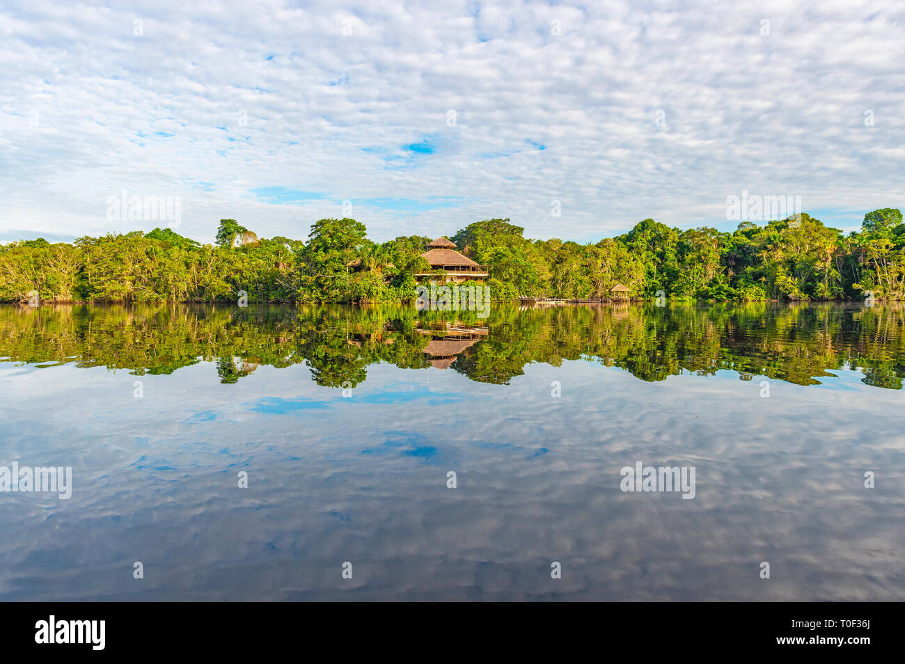 Jungle lodge in the Amazon Rainforest.The Amazon river basin is found in Guyana, Ecuador, Peru, Brazil, Colombia, Venezuela, Suriname and Bolivia. - Stock Image
