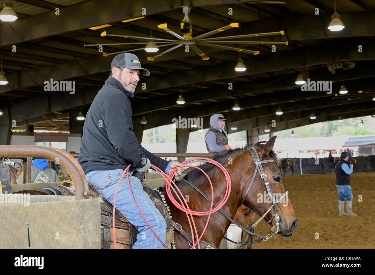 American cowboy on a saddled bay horse waiting for a team roping event or practice before a rodeo in Montgomery Alabama, USA. - Stock Image