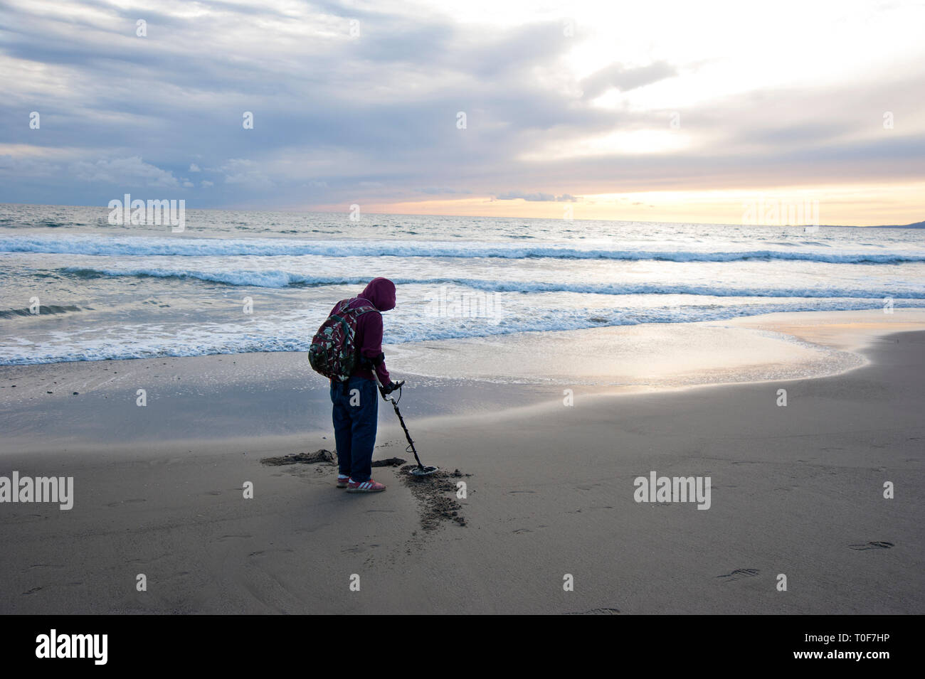 Prospector with metal detector searching for buried treasures at Santa Monica beach - Stock Image
