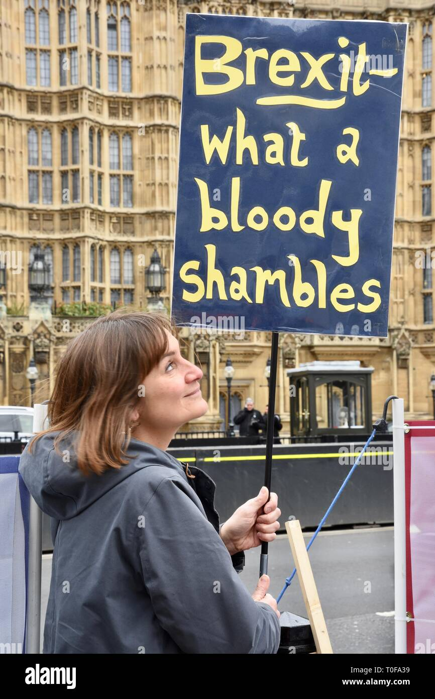 A Pro EU demonstrator protests against Brexit. Houses of Parliament, Westminster, London. UK - Stock Image