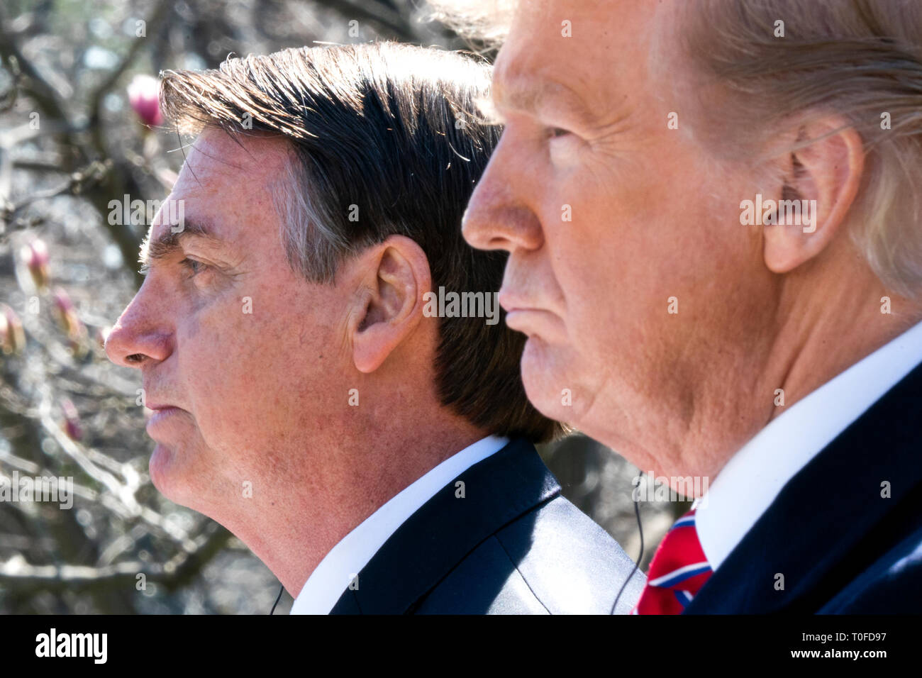US President Donald J. Trump (R) and Brazilian President Jair Bolsonaro (L) attend a press conference in the Rose Garden of the White House in Washington, DC, USA, 19 March 2019. Bolsonaro, a right-wing nationalist, earned the nickname the 'Trump of the Tropics.' Credit: Jim LoScalzo / Pool via CNP /MediaPunch - Stock Image