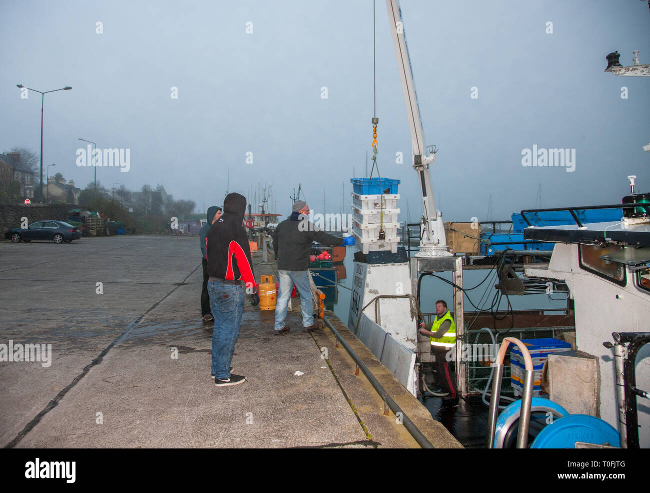 Crosshaven, Co. Cork, Ireland. 20th March, 2019. Crew of the fishing vessel Tricky Business offload their catch of Haddock and Hake on to the pier at Crosshaven, Co. Cork, Ireland. Credit: David Creedon/Alamy Live News - Stock Image