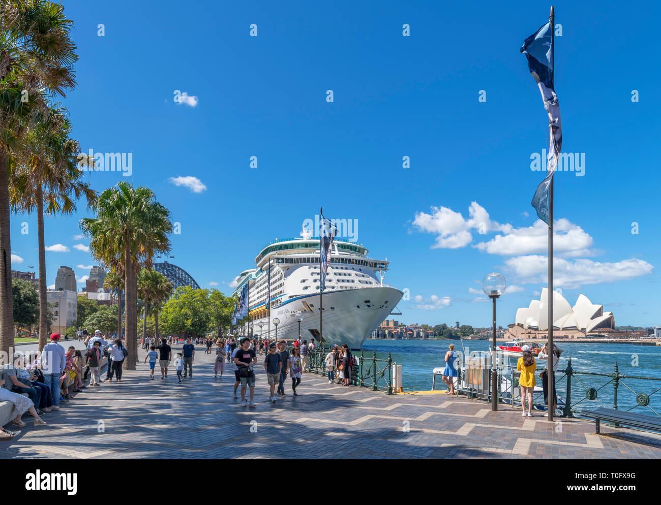 Circular Quay, Sydney. Explorer of the Seas cruise ship with Sydney Harbour Bridge to the left and Sydney Opera House to the right, Sydney, Australia - Stock Image
