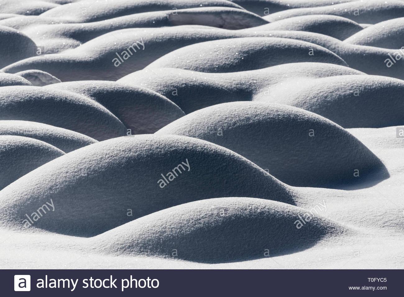 Mounds of snow formed over tussocks of sedges, Zelenci Spring, Kranjska Gora, Slovenia - Stock Image