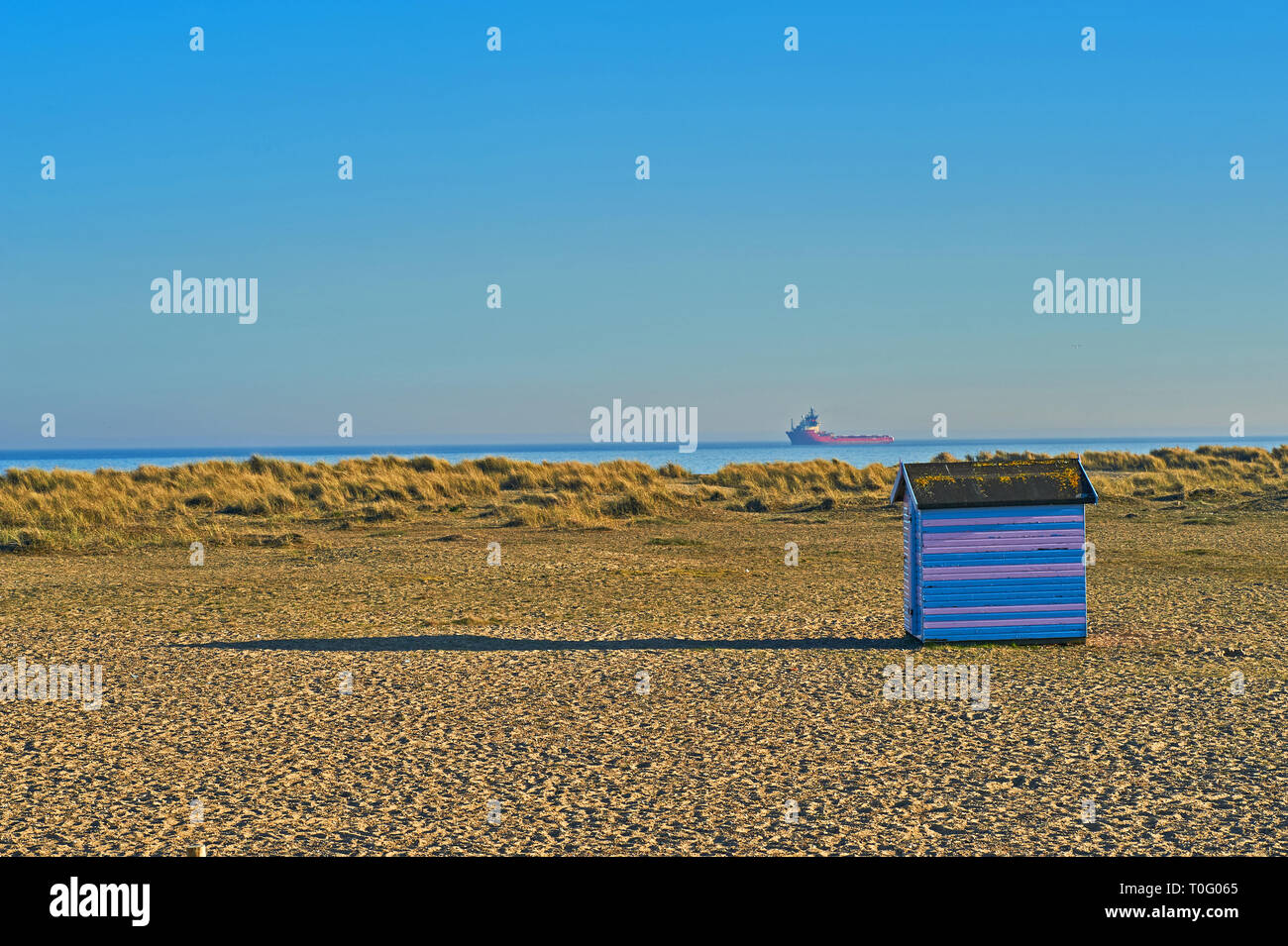 Traditional seaside beach huts in blue and pink stripes on the shingle coastal strip in Great Yarmouth, Norfolk Stock Photo