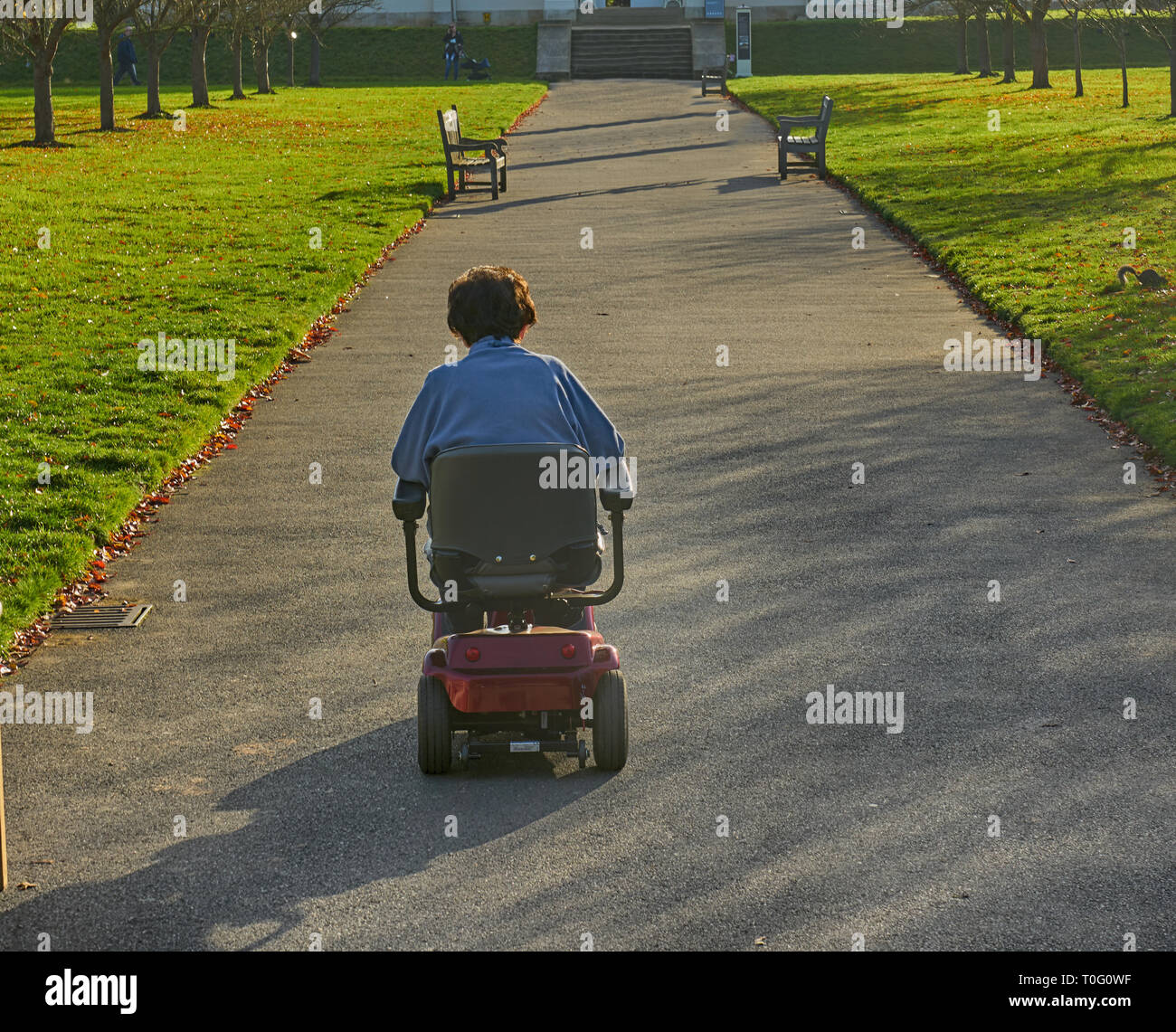 disabled woman.  disability.  electric weelchair.  reduced mobility Stock Photo