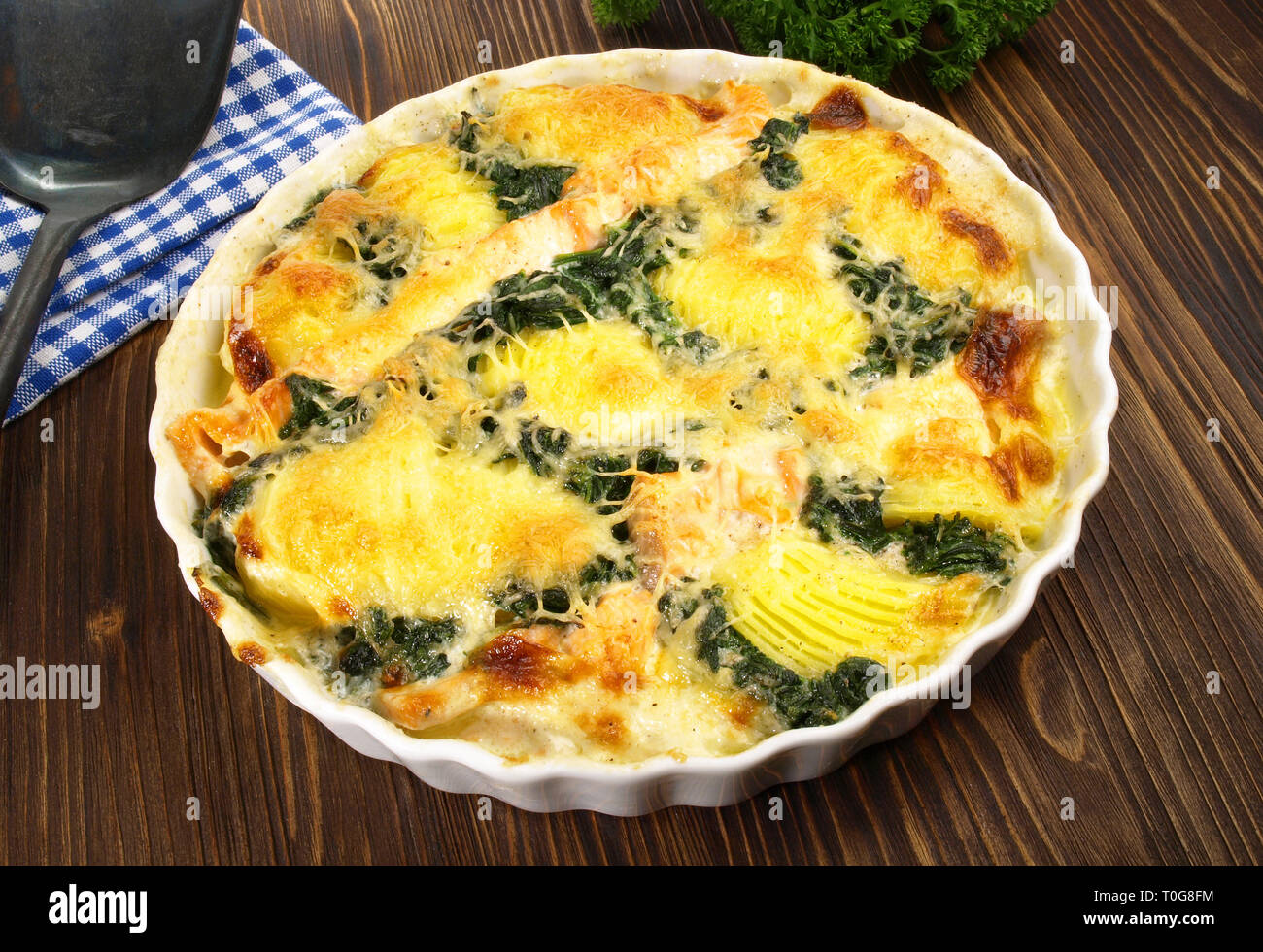 Salmon - Fish Gratin with Spinach - Stock Image