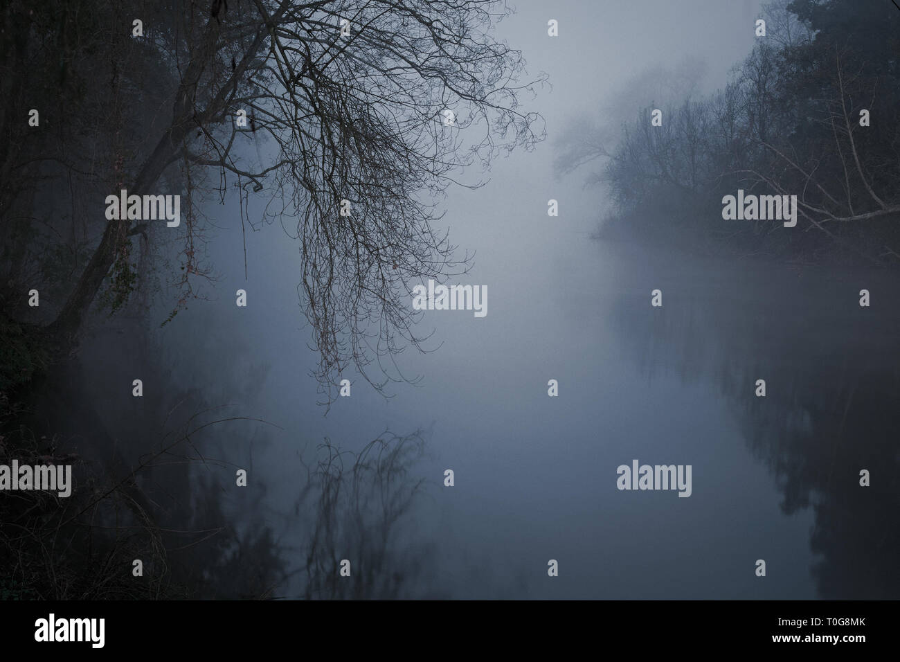 Mysterious and frightening river in a foggy night - Stock Image