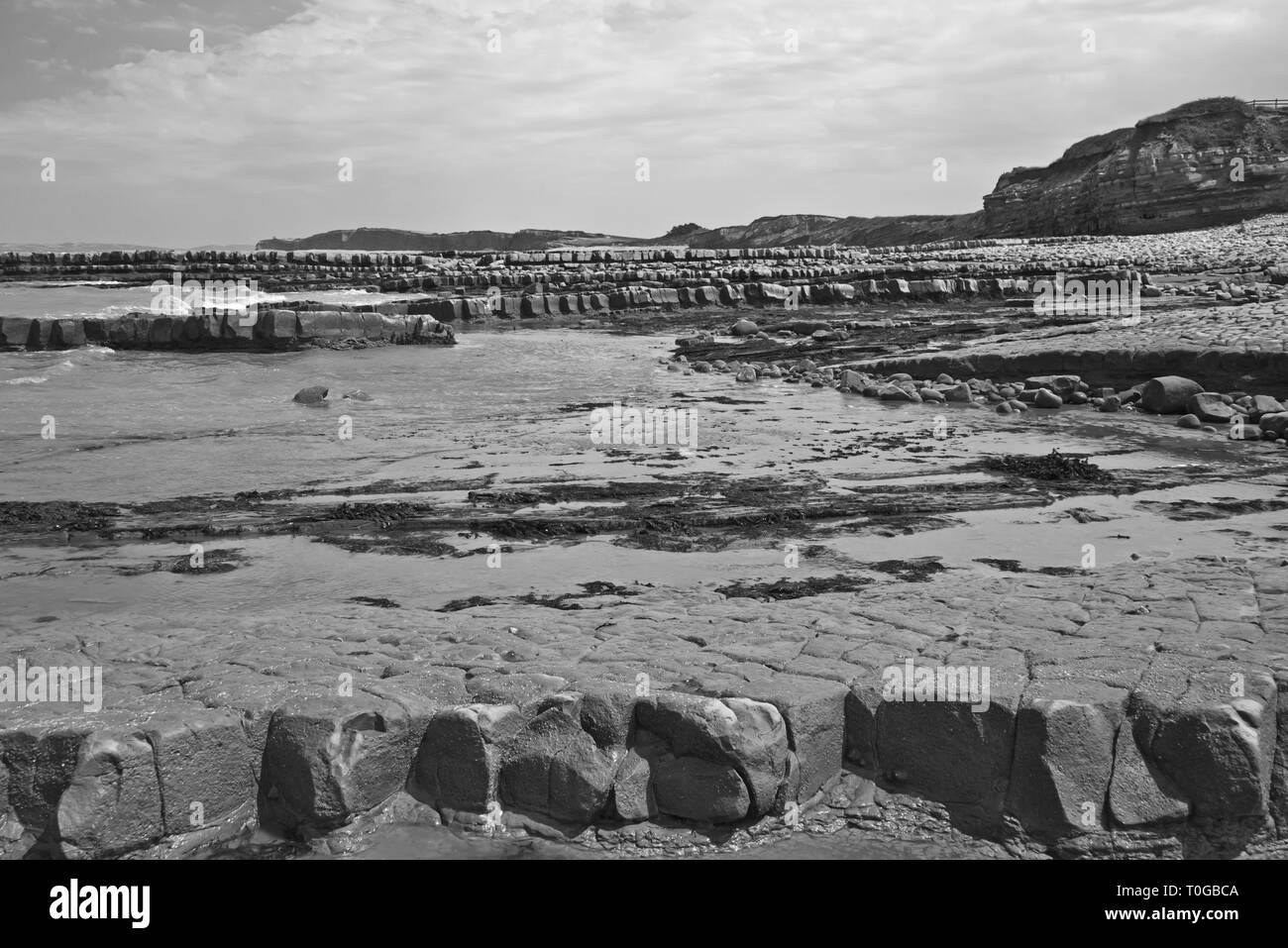 The exposed ledges and rock strata along the foreshore on the Bristol Channel coast at Kilve in Somerset UK at low tide - Stock Image