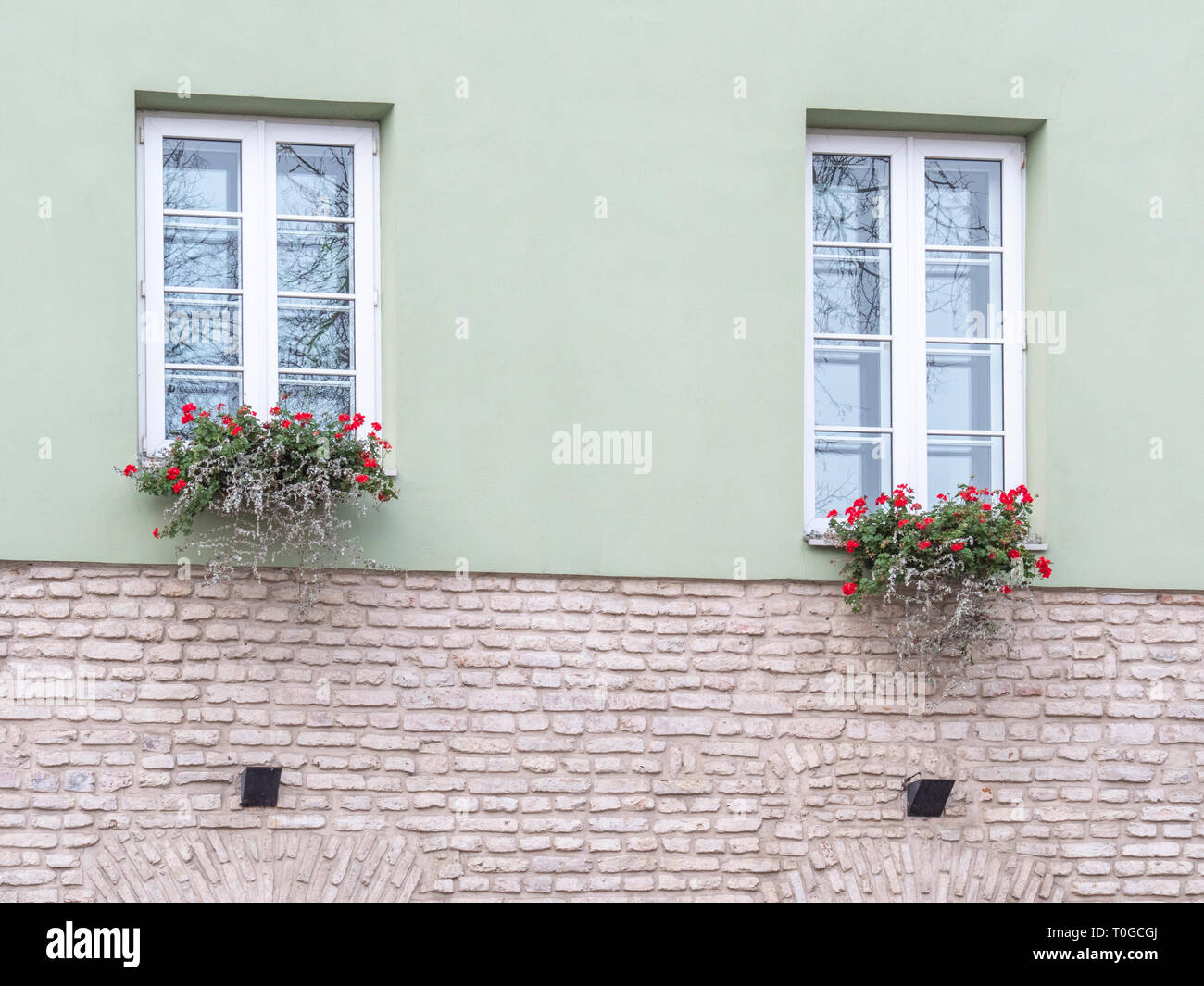 Typical european window with flowers. Flower box below a windows on an apartment building - Stock Image