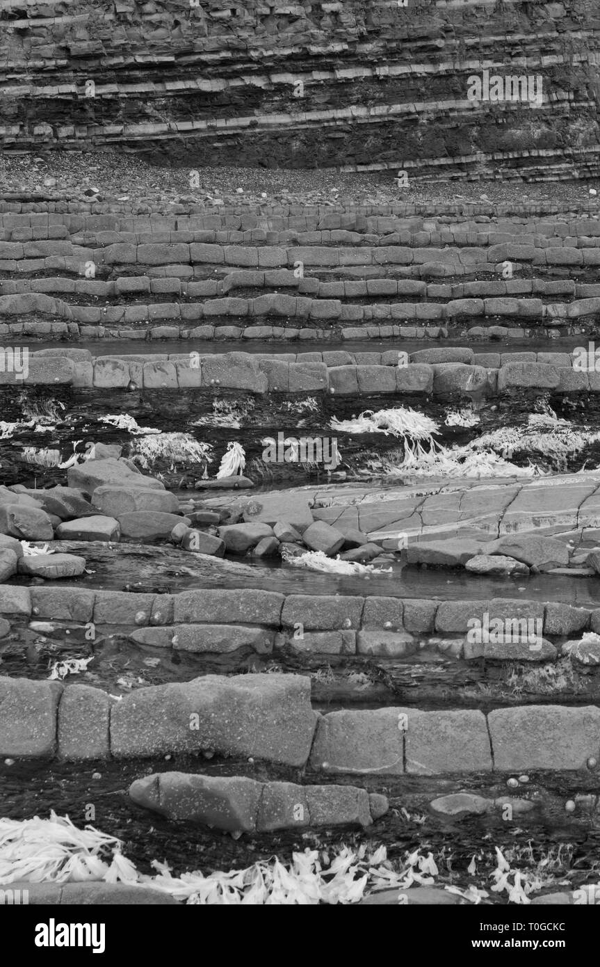 infrared picture of the exposed rock strata along the foreshore on the Bristol Channel coast at Kilve in Somerset UK at low tide - Stock Image