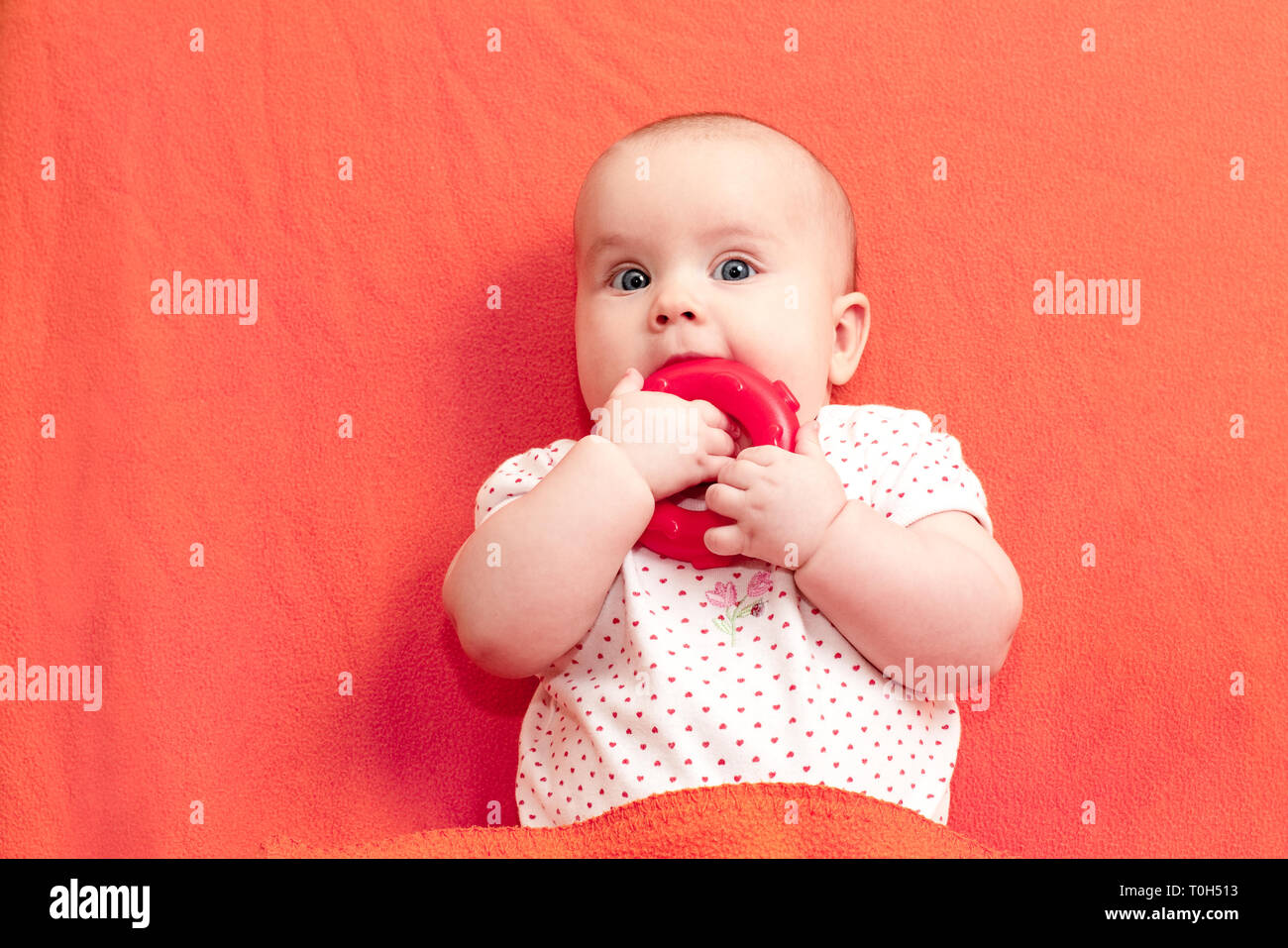 a2878c721 Head and shoulders portrait of little baby girl chewing teething ring laying  on living coral trendy color blanket
