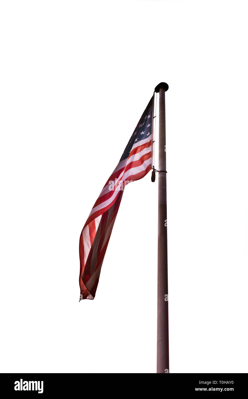 flag of the United States of America on a pole, isolated - Stock Image