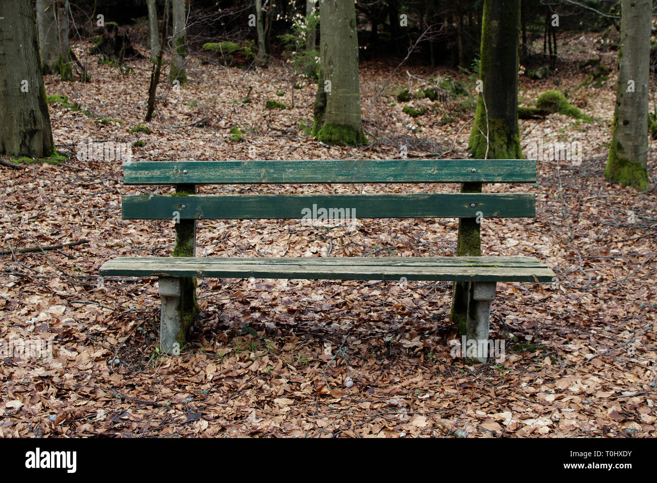 green bench - Stock Image