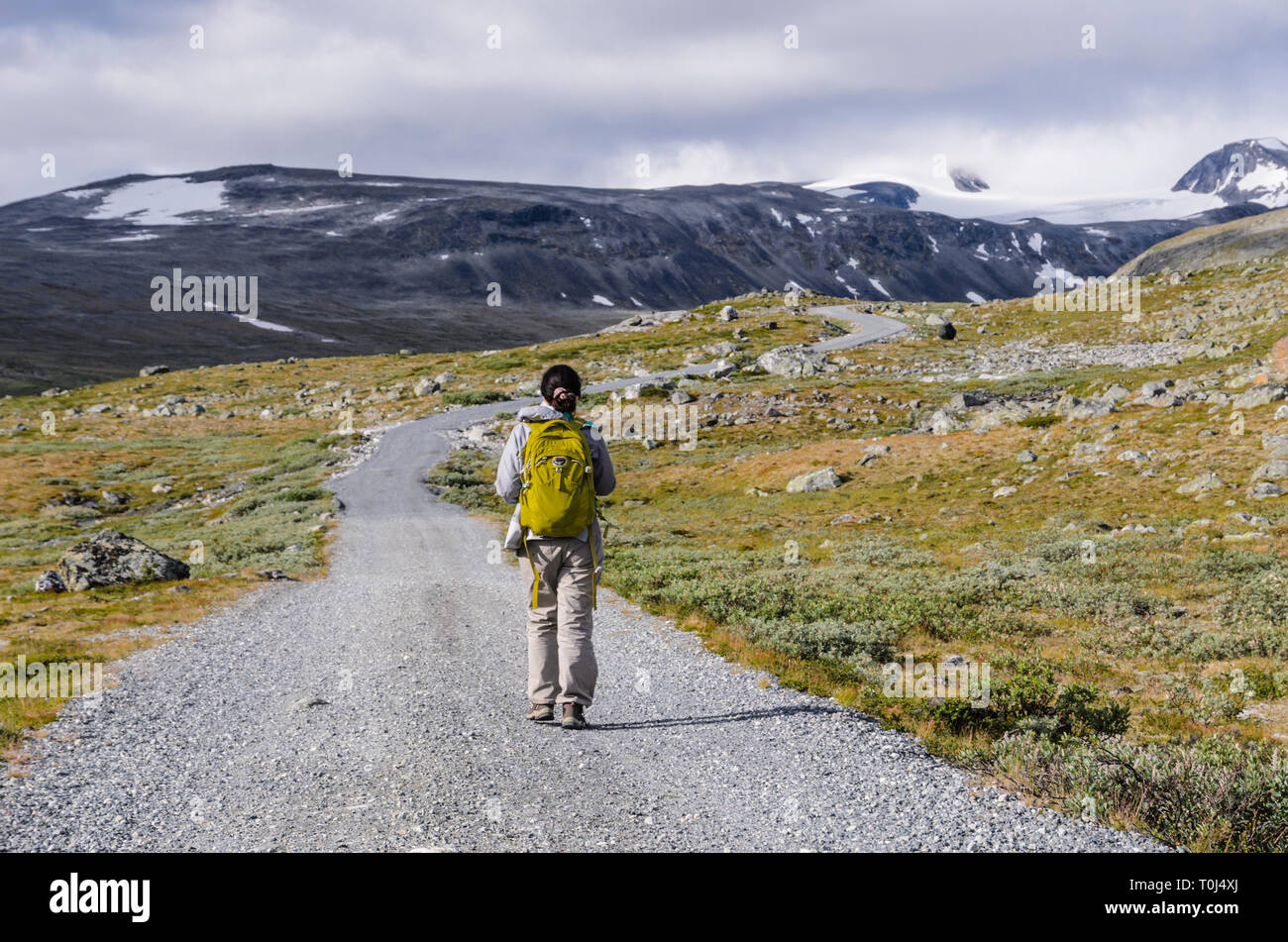 Tourist in the Jotunheimen national park - Stock Image