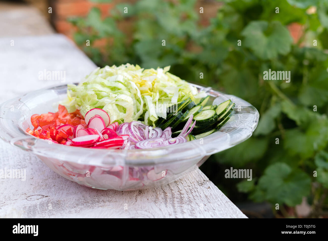 Freshly chopped summer salad. Many delicious vegetables in glass salad bowl - cucumber, lettuce, radish, tomatoes, red onion Stock Photo