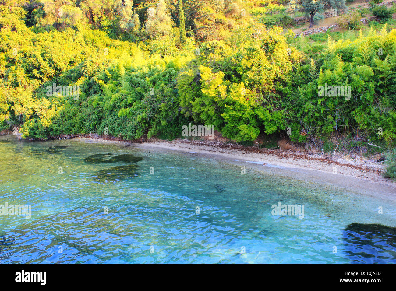 Beautiful island of Scorpios (Ionian sea), owned by Onassis family. - Stock Image
