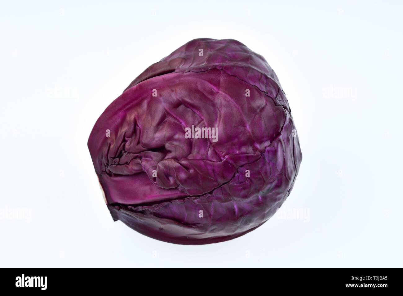 Red cabbage, studio admission, Rotkohl, Studioaufnahme - Stock Image