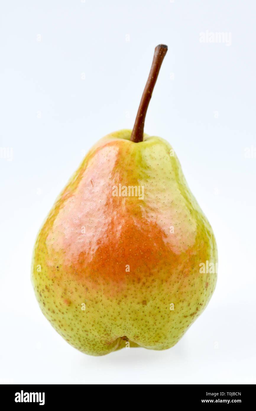 Pear, studio admission, Birne, Studioaufnahme - Stock Image