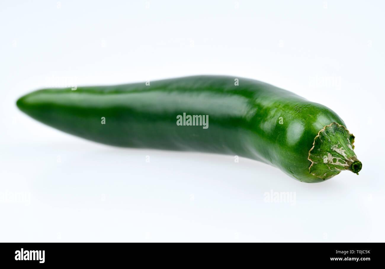 Green chilli pod, studio admission, Grüne Chilischote, Studioaufnahme Stock Photo