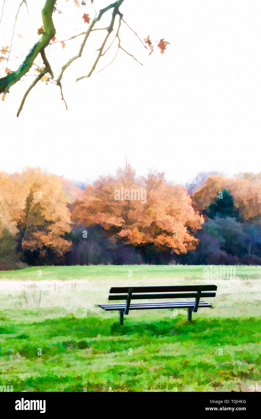 Digital illustration of an unoccupied wooden park bench looking out over a woodland meadow to a row of golden-leafed oak trees in autumn Stock Photo