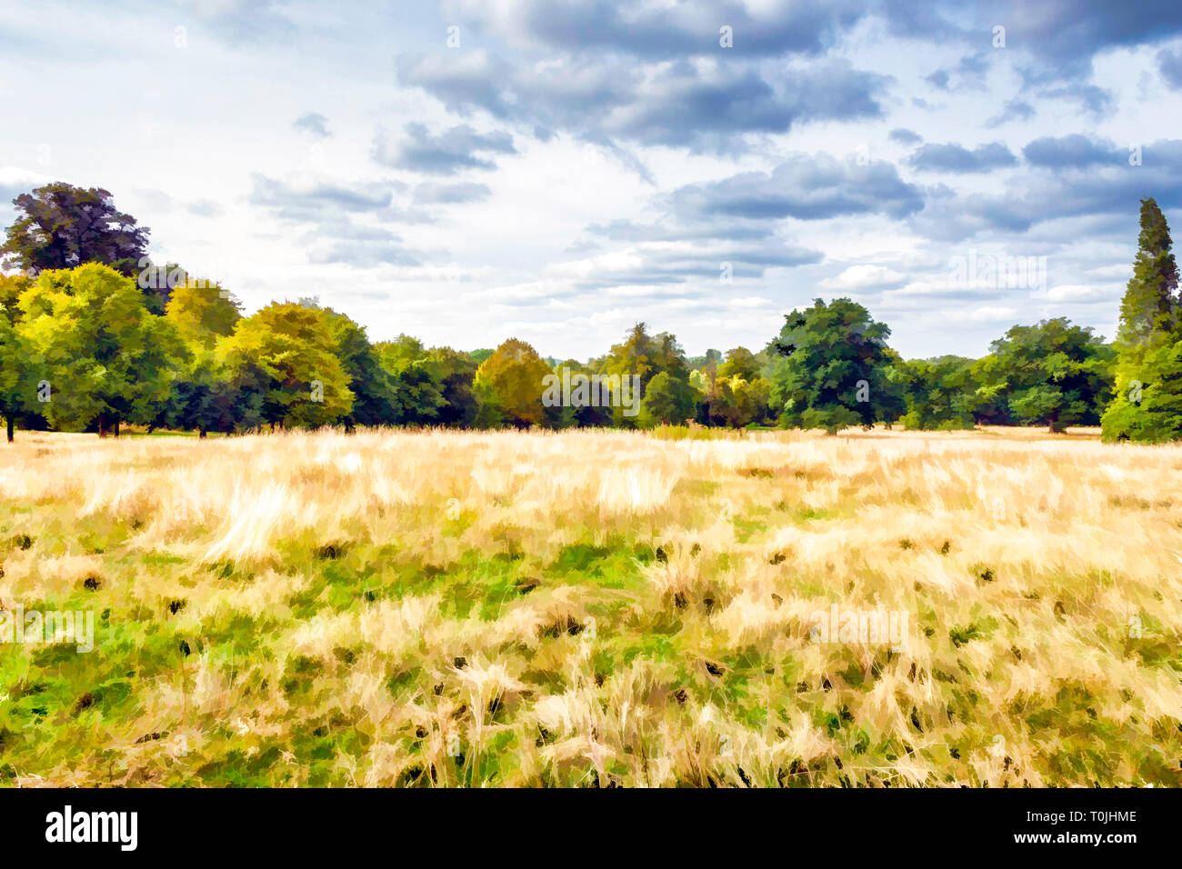 Painterly illustration of a yellow grassy meadow with trees and woodland in the background on a summer's day - Stock Image