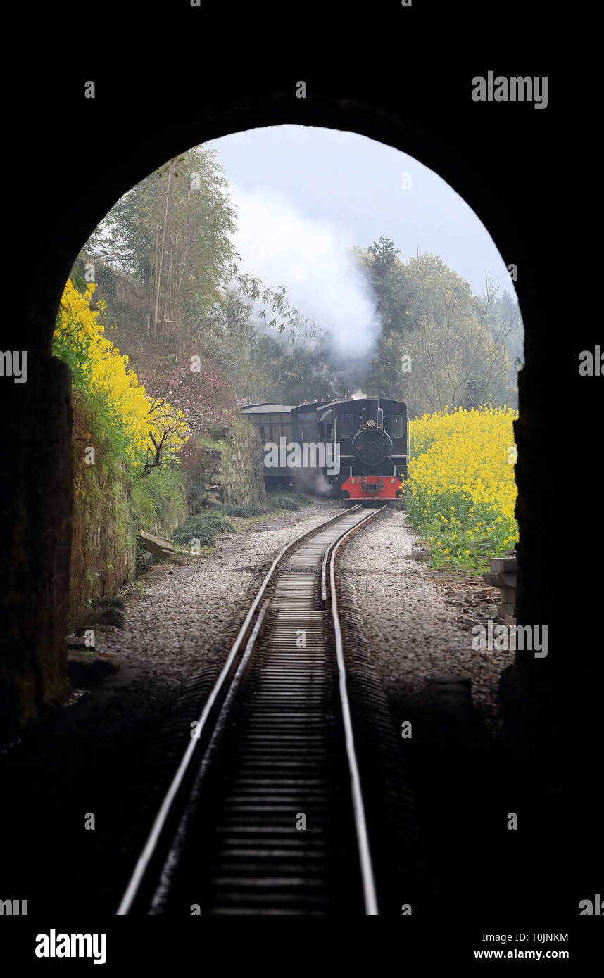 Qianwei, China's Sichuan Province. 20th Mar, 2019. A Jiayang steam train runs on a narrow gauge railway in Qianwei County, southwest China's Sichuan Province, March 20, 2019. The old-fashioned steam train, running on a narrow gauge railway in Qianwei County, serves mainly in sightseeing, but as increasing number of tourists visit the county in recent years, the train itself has become an attraction providing a journey of reminiscence. Credit: Chen Tianhu/Xinhua/Alamy Live News - Stock Image